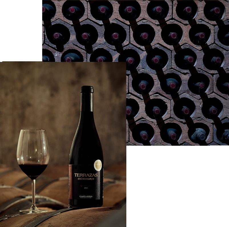 Vinos Ainzón